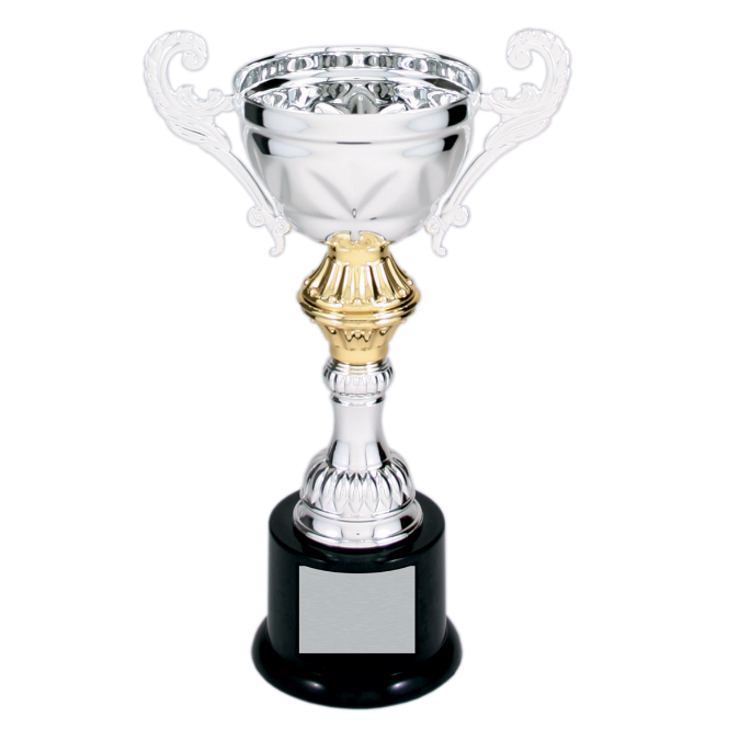 Silver & Gold Metal Corporate Cup Trophy on a Black Marble Base